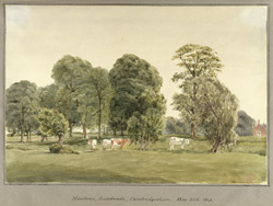 Meadows, Landwade, Cambridgeshire May 25th 1848